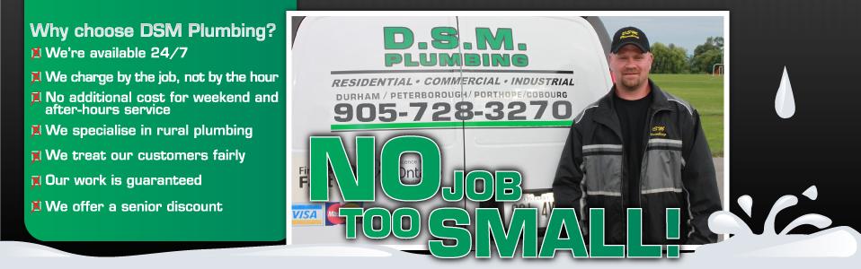DSM Plumbing